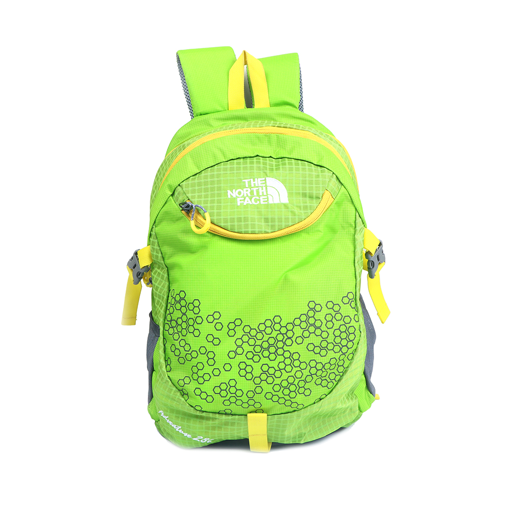 The North Face School Travel Backpack