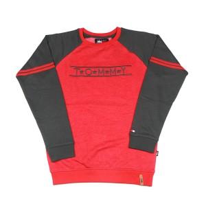 Men's Winter Crewneck Sweatshirts (red)