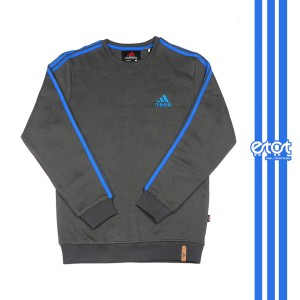 Men's Winter Crewneck Sweatshirts (gray)